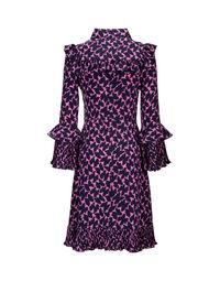 Fancy Dress 7