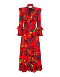 Long Fancy Dress 5