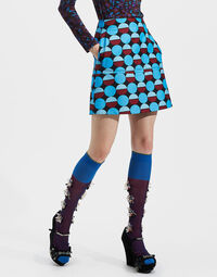 Mini Skirt 1