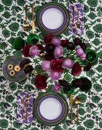 Soup And Dinner Plates Set Of 2 5