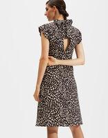 Bon Ton Dress