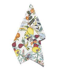 Dishtowel (50x70) 1