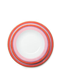 Soup And Dinner Plates Set Of 2 2
