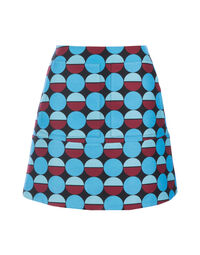 Mini Skirt 5